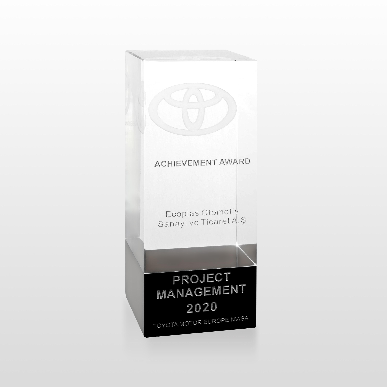 Toyota Motor Europe Project Management Awards, 2020